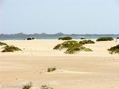 fuerteventura bilder straende playas de corralejo 09