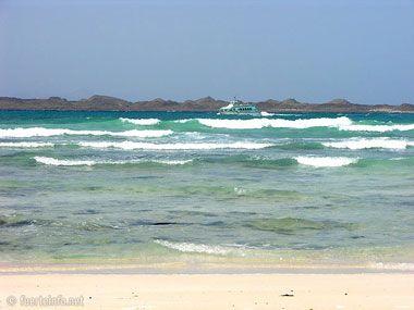 fuerteventura bilder straende playas de corralejo 10