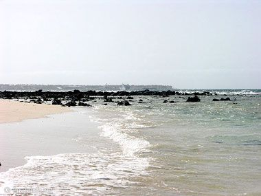 fuerteventura bilder straende playas de corralejo 23