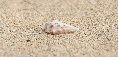 fuerteventura sandfarbe strand