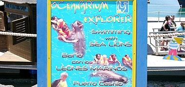 fuerteventura fuerte blog ocenarium explorer